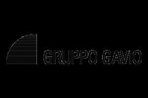 Gruppo Gavio